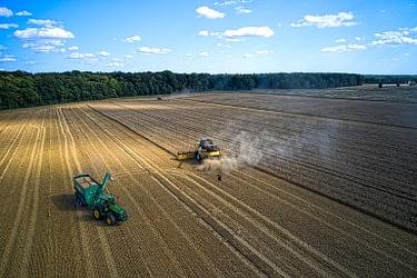 Abtransport von Getreide